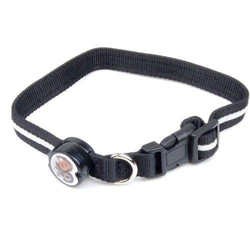 Collar Con LED Azul Intermitente Luz Para Perro Co... Saldo