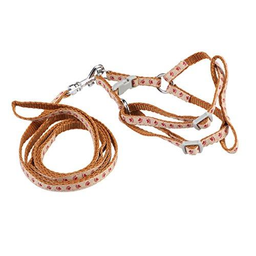 Andux Zone Tire Collar de Perro Arnés del Perro y ... Ocasión